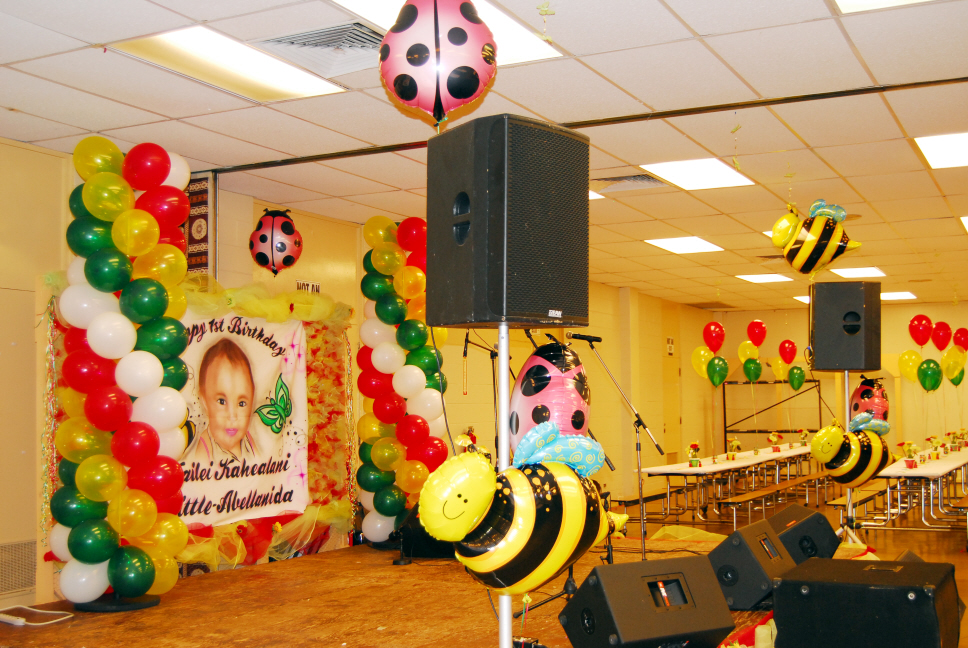 Kailei Birthday Lady Bug Bumble Bee Decorations