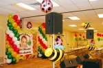 kailei birthday lady bug & bumble bee decorations