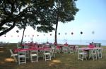 DSC_1149 Pink Princess Zebra Birthday Beach Party Balloons