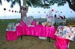 DSC_1167 Zebra Party Check-in First Birthday