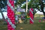 DSC_1189 Zebra & Magenta Balloon Decorations Columns