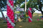 DSC_1189 Zebra & Magenta Balloon Decorations Columns