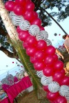 DSC_1192 Zebra Print Balloons with Magenta Pearl Decorations Birthday