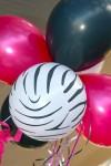 DSC_1218 Zebra Balloons