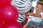 DSC_1227 Magenta & Zebra Print Balloons