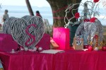 DSC_1229 Check-in Table Zebra Party Theme