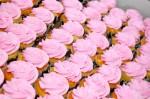 DSC_1245 Pink Cupcakes Zebra Party