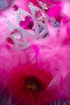 DSC_1248 Magenta Pink Princess