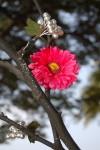 DSC_1262 Handmade Tree Decoration w/Pink Flowers