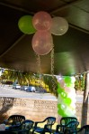 Simple Balloon Decorations DSC_1590-1